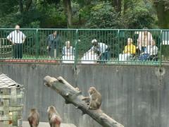 バスハイクで羽村動物園