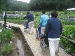 ☆吹上菖蒲公園☆