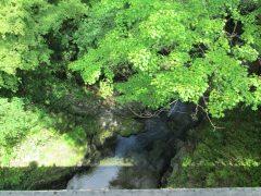 秋川渓谷の自然にも近く